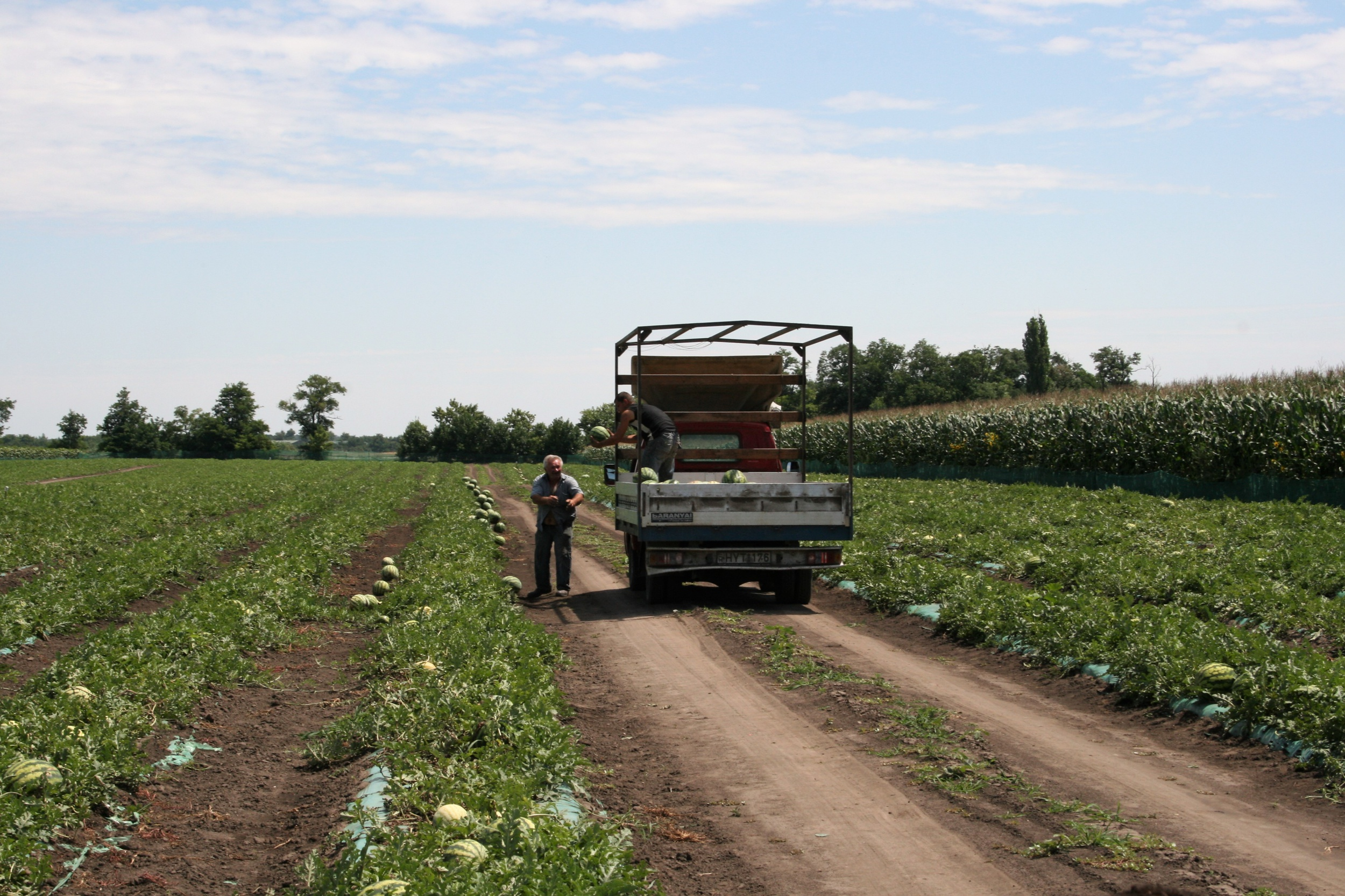 Lesz ember, aki tovább tudja vinni a mezőgazdaság hagyományait? 4