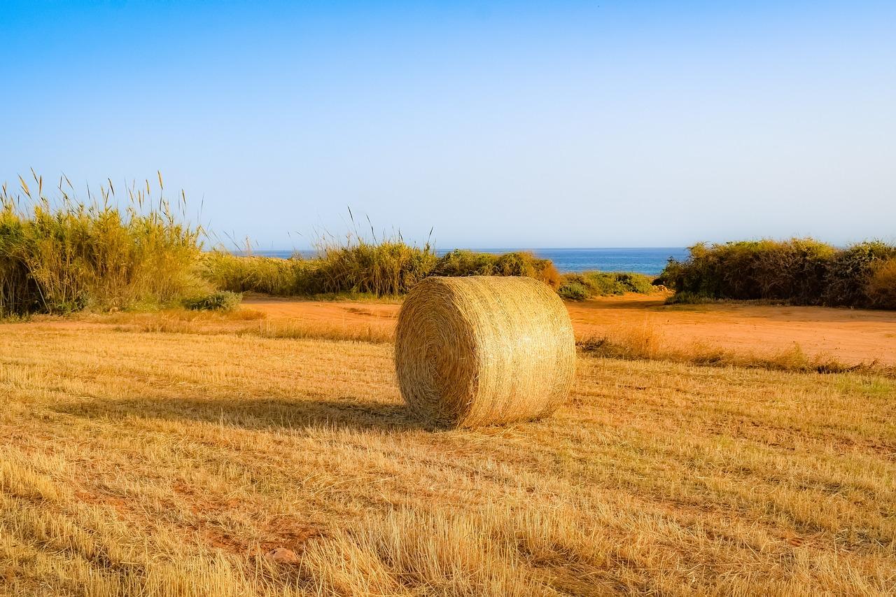 Az EU agrárkibocsátásának két százalékát se állítottuk elő 2