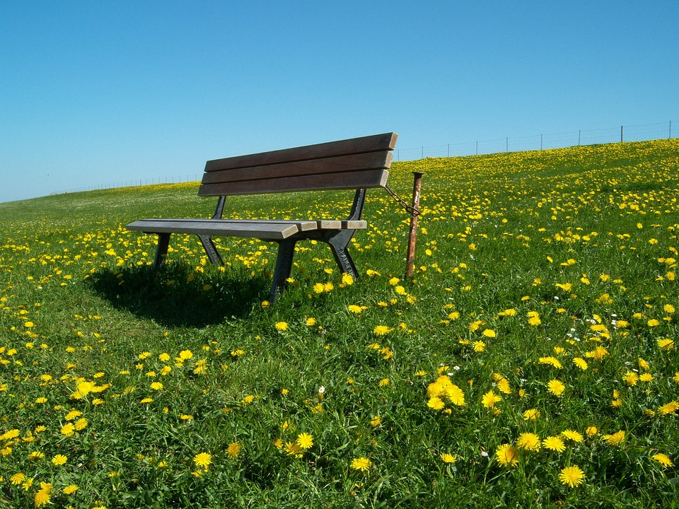 Akár fél óra alatt is le lehet égni a napsütésben a hétvégén és kezdődik a pázsitfűfélék pollenszórása is 2